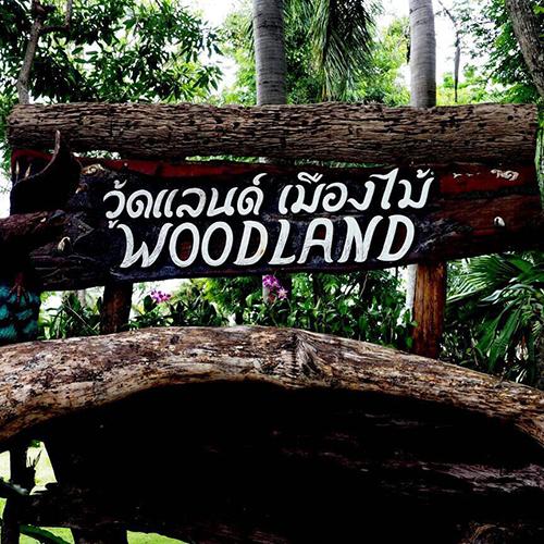 woodland เมืองไม้