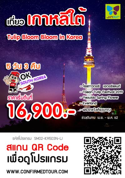 ทัวร์เกาหลี Tulip Bloom Bloom in Korea